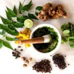 3 Essential Herbs for Stress Reduction